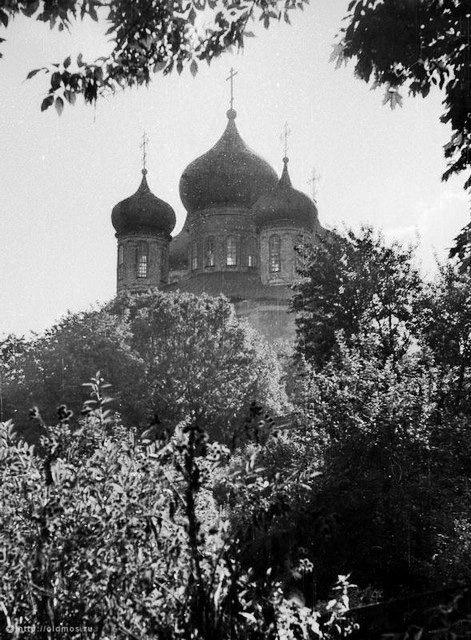Купола Большого Донского собора. 1970 год